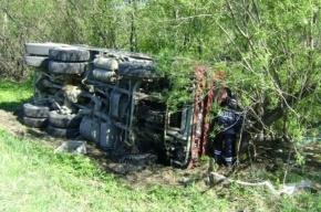 Под Петербургом в ДТП с грузовиком погибла семья из трех человек