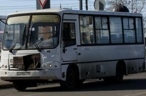 На улице Типанова произошло массовое ДТП с двумя маршрутками