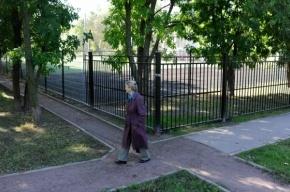 Пешеходам в Московском районе мешают школы