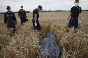 Голландия намерена возобновить поиски останков погибших в крушении Boeing-777
