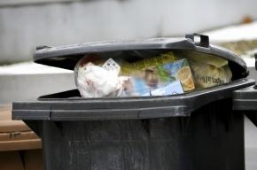 На Охте уличные художники позолотили мусорные баки