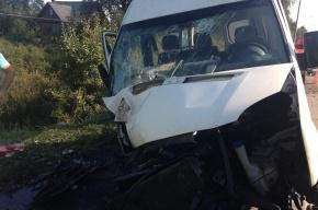 Под Колпино в аварии с маршруткой пострадало шесть человек