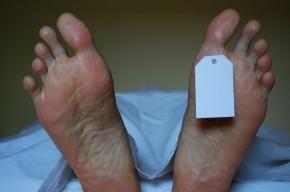 В Петергофе нашли тела двух пожилых мужчин