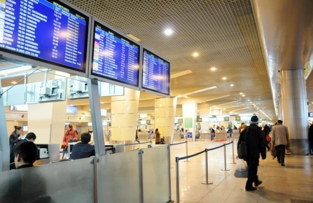 В аэропорту «Домодедово» мигрант покончил с собой от стыда