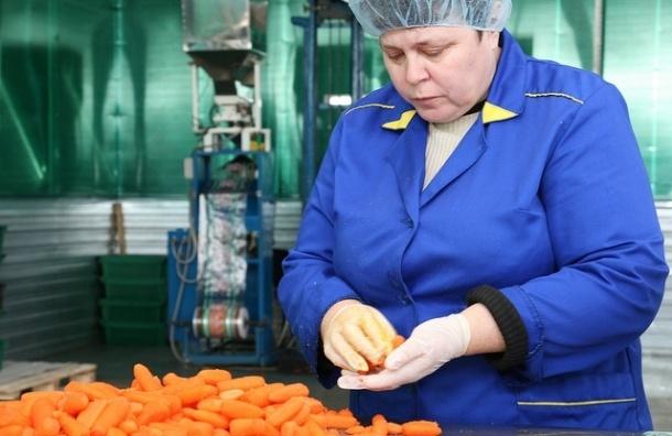 Россельхознадзор запретил всю растительную продукцию из Украины