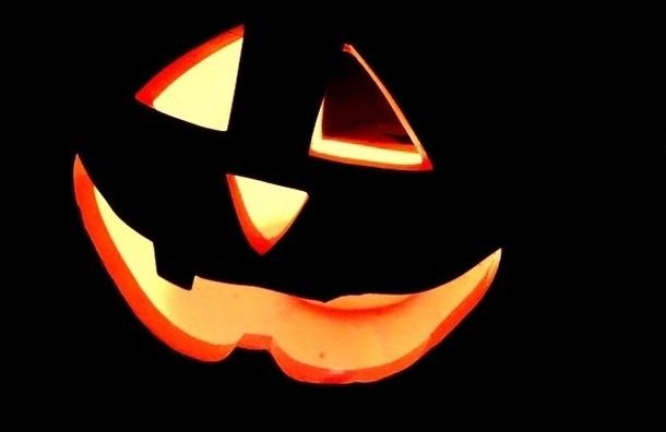 Милонов предотвратил празднование Хэллоуина на Марсовом поле