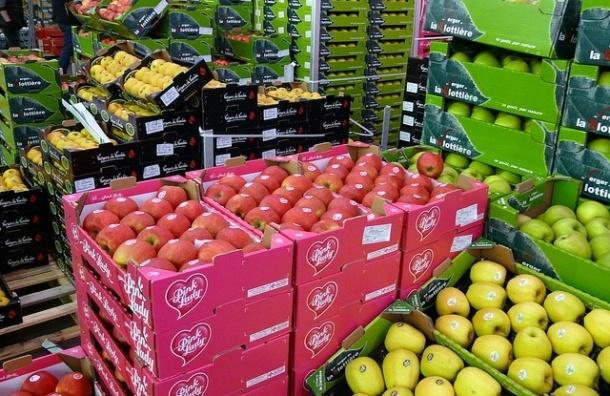 Рядом с «Пулково» начинают строить продуктовый рынок «Агрополис»