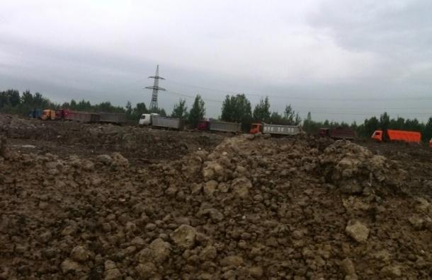 Несанкционированная свалка в Обухово выросла до 100 тысяч кубометров