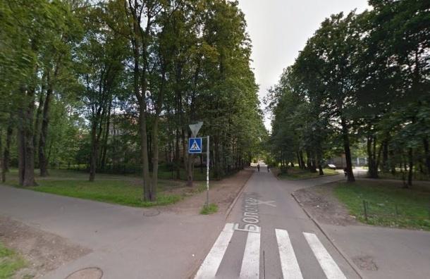 В Петербурге появятся сквер Лихачёва и сад Пикуля