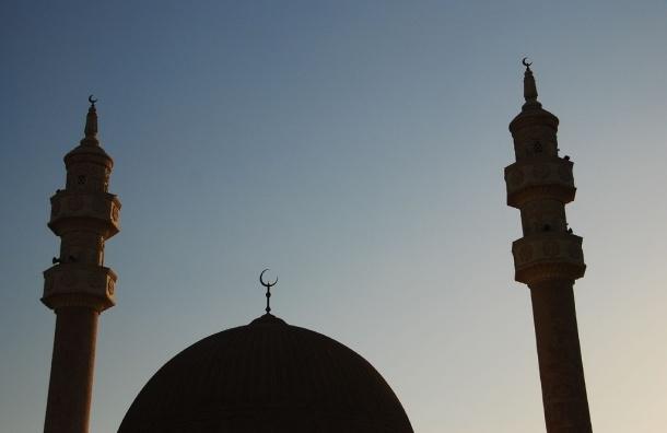 В Невском районе собирают подписи против строительства мечети