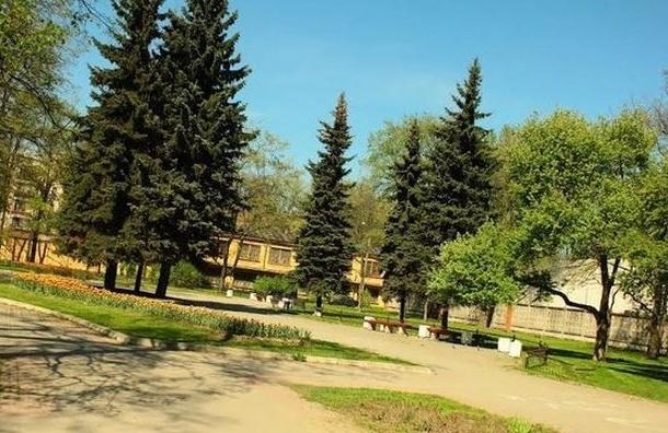 Общественники собирают подписи за благоустройство Южно-Приморского парка