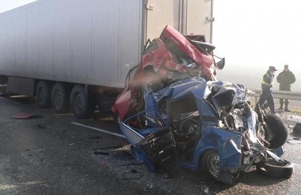 В массовом ДТП на Кубани с участием 50 машин погибли два человека