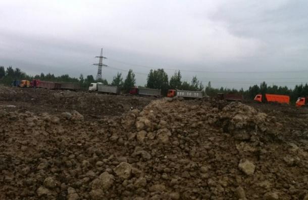 Чиновники Невского района закрыли глаза на незаконную свалку