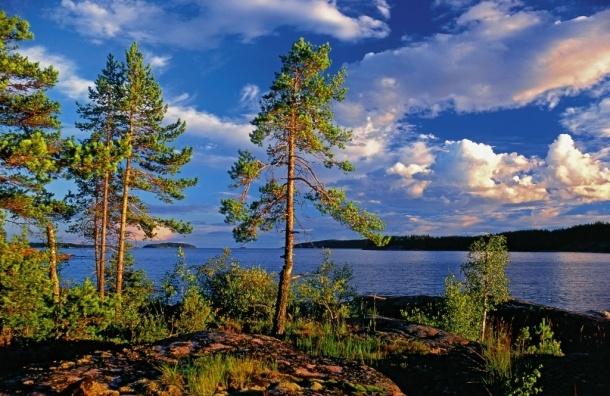 Ладожское и Онежское озера могут объявить национальным достоянием