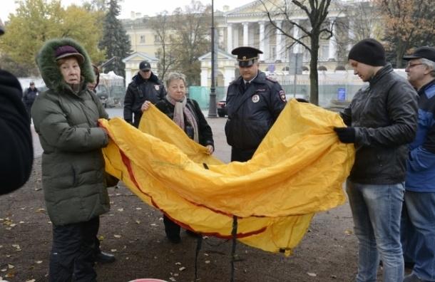 Ильюшинцы провели пикет у ЗакСа в день принятия бюджета