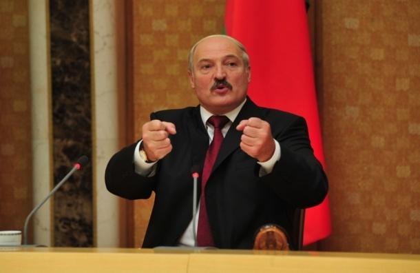 Лукашенко обвинил Януковича в поддержке «Правого сектора»