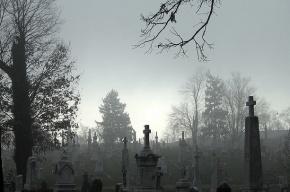 Петербурженку два часа насиловали в склепе на кладбище