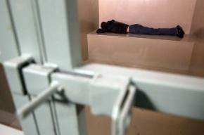 В Пушкине арестованный за кражу скончался в изоляторе