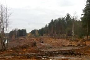 В Приморском районе нелегальные добытчики песка вырыли два карьера
