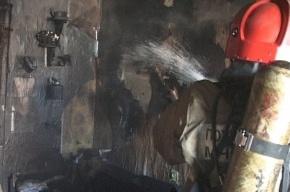 В Колпино из-за стиральной машинки выгорела квартира