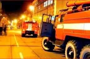 В пожаре на Новоизмайловском погибли два человека