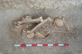 Археологи нашли в Краснодарском крае скелеты двухметровых людей