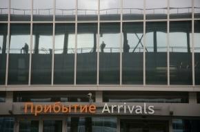 В аэропорту Петербурга задержан сын экс-министра транспорта Украины