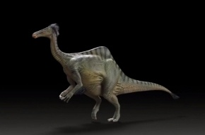 Раскрыта тайна динозавра с гигантскими конечностями