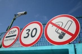 Житель Петербурга пытался провезти из Эстонии 375 кг продуктов