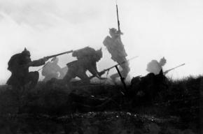 В Эрмитаже расскажут о Первой мировой войне