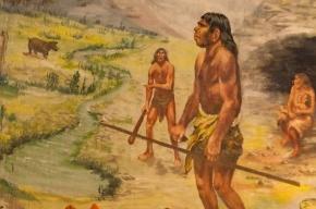 Предки европейцев обнаружились в Сибири, неподалеку от Байкала