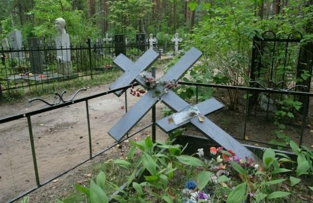 Измайловский проспект построят в обход Митрофаньевского кладбища