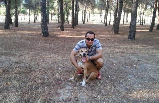 В Испании усыпят собаку медсестры, заразившейся Эболой