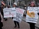 Фоторепортаж: «Митинг врачей 17-11-2014»