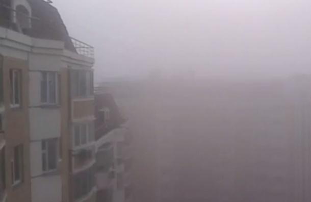 В Москве запах сероводорода объяснили разовым выбросом в Люблино