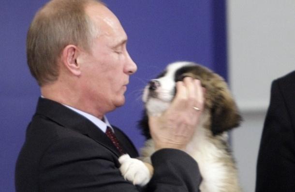 Путин рассказал о том, что смысл жизни – в любви
