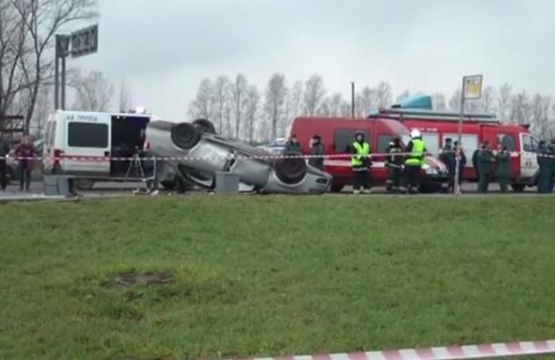 В аварии на остановке в Пушкине пострадали девять человек