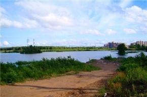 Незаконные карьеры в Приморском районе проверили природоохранные ведомства