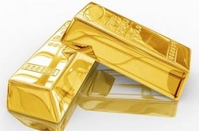 Сотрудница банка вынесла с работы 9,5 кг золота
