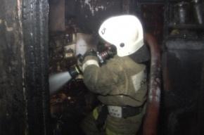 В Петербурге при пожаре на Жуковского эвакуировали 17 человек