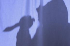 В Петербурге пенсионер напал с ножом на свою падчерицу
