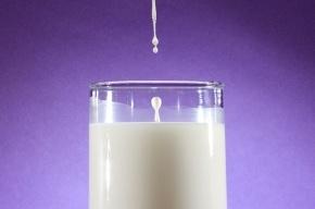 Ученые: три стакана молока в день приближают смерть