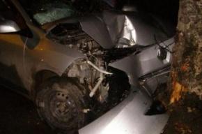На Петергофском шоссе водитель погиб от удара о фонарь и дерево