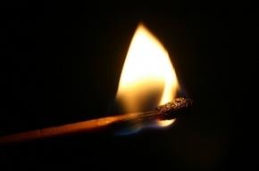 В Подмосковье мужчина сжег себя после убийства женщины и ее дочери