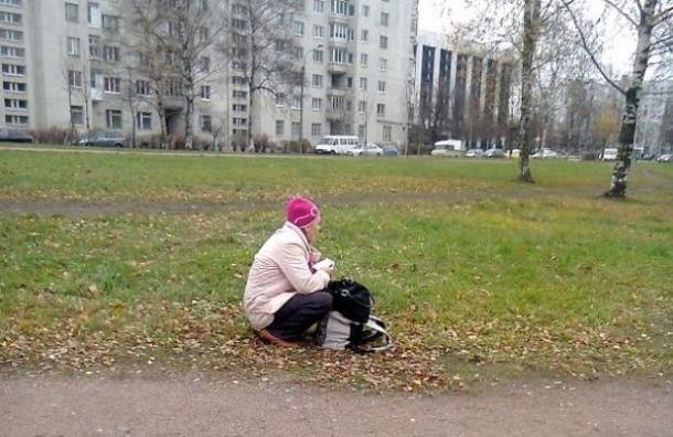 Жители Московского района ждут троллейбус на газоне