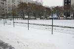 Фоторепортаж: «Сквер в Московском районе превратили в парковку»