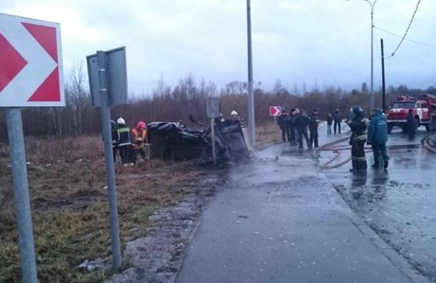 В Пушкине в аварии водителю оторвало голову