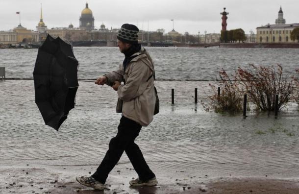 Ветер очистил петербургскую атмосферу от загрязняющих веществ