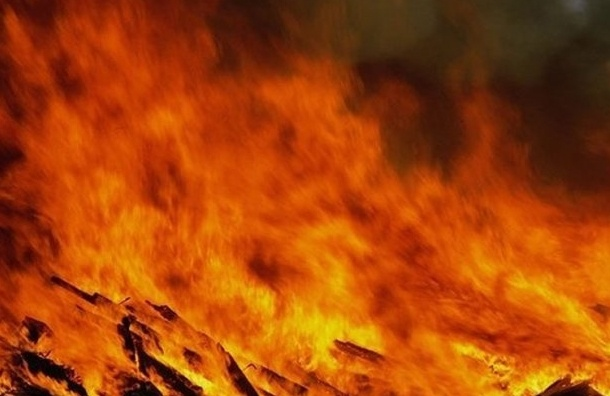 При пожаре на Псковской улице пожарные спасли двух детей