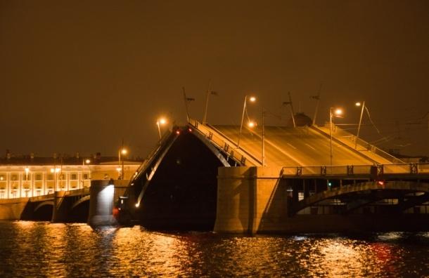 В ночь на пятницу разведут Биржевой мост